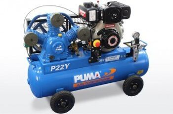 PU P22 Y ES left 340x224